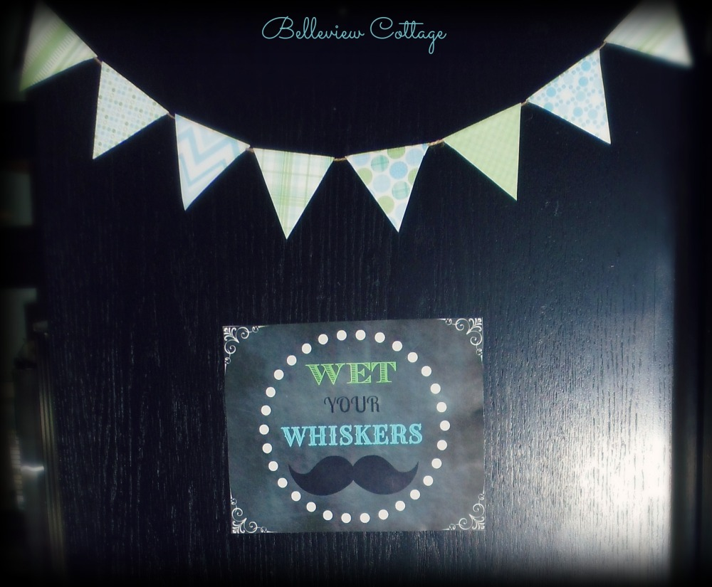 """Wet Your Whiskers"" sign & bunting 