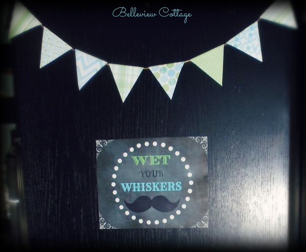 """""""Wet Your Whiskers"""" sign & bunting 