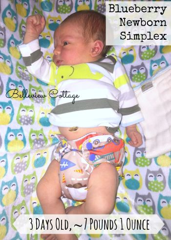 Newborn Cloth Diaper Reviews: Blueberry Simplex | Belleview Cottage
